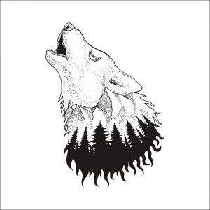 Z lesa - vlk
